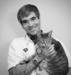 Our Veterinary Team In San Antonio Tx Alamo Dog Amp Cat